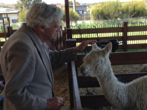 Keith at Creswick Woollen Mill with an alpaca